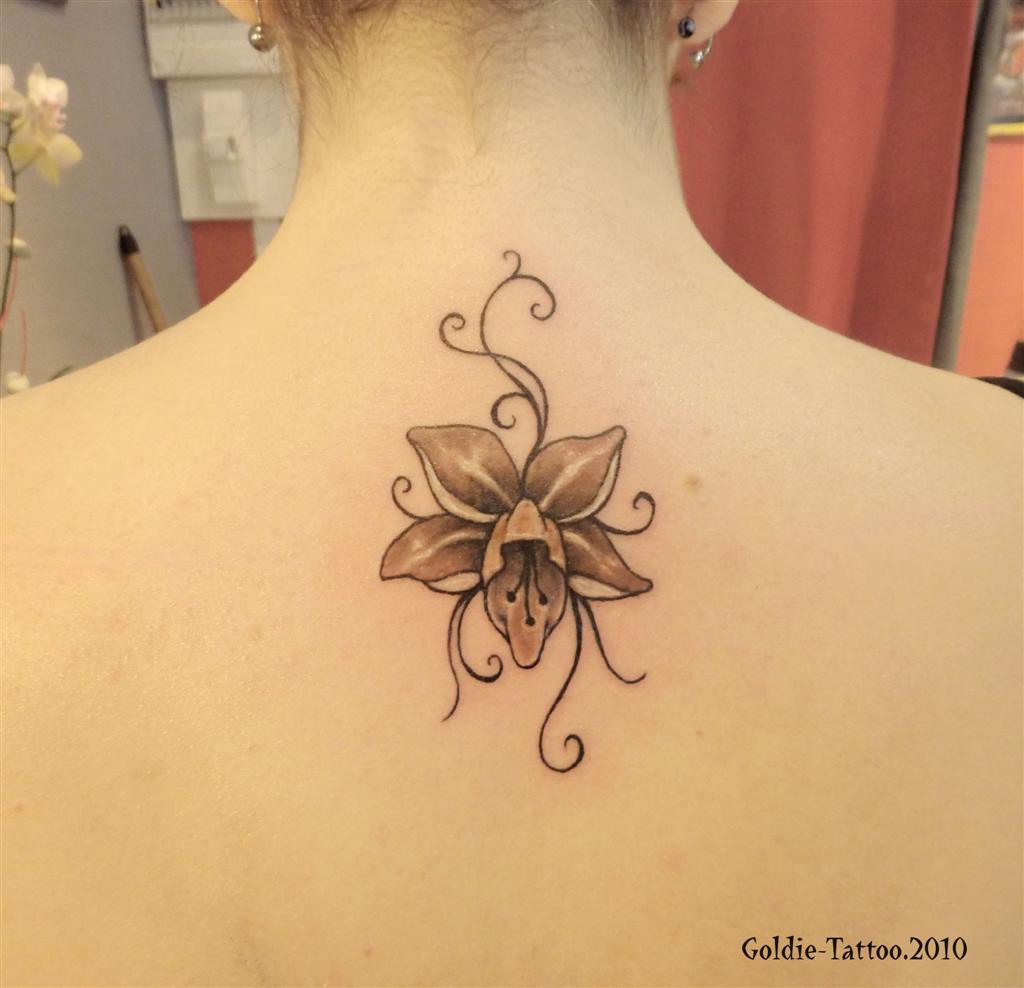 Tatouage fleur de tiare arabesque photos et mod les de tatouages pictures to pin on pinterest - Modele de tatouage ...