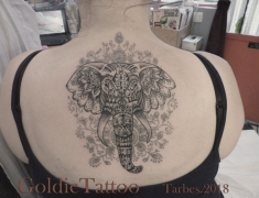 GOLDIE-TATTOO-Tarbes.oct.2017.WEB..ELEPHANT-SUR-DENTELLE-HENNE-GRISE-DOS.jpg