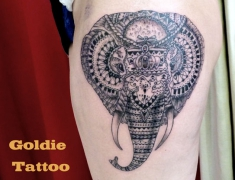 Goldie--Tattoo-Tarbes.juin2015..elephant-dentelle.web..jpg