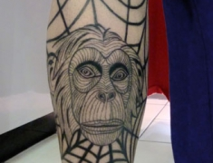Goldie-Tattoo-Tarbes.singe-toile.web.jpg