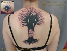 GOLDIE-TATTOO-Tarbes.juillet2018.web.couverture-ancien-tattoo-par-arbre-de-vie.jpg